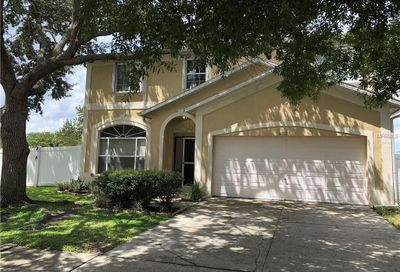 11112 Whittney Chase Drive Riverview FL 33579