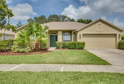 8717 Maple Pond Court Trinity FL 34655