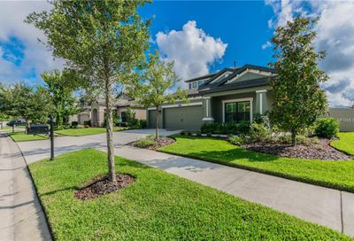 8244 Sequester Loop Land O Lakes FL 34637