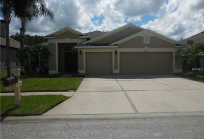 3232 Stoneman Loop Land O Lakes FL 34638