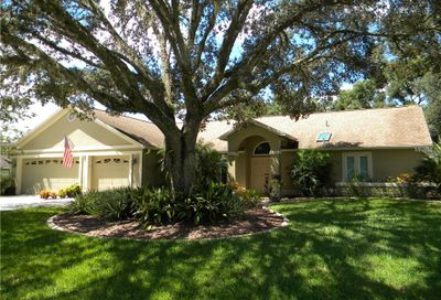 25415 Tradewinds Drive Land O Lakes FL 34639