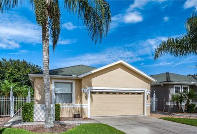 8049 Sanguinelli Road Land O Lakes FL 34637