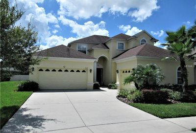 3529 Diamond Falls Circle Land O Lakes FL 34638