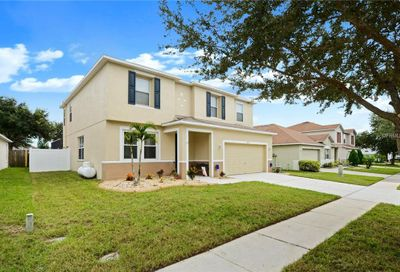 10907 Subtle Trail Drive Riverview FL 33579