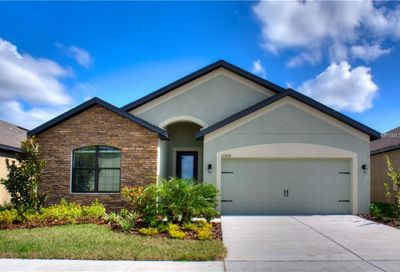12204 Ballentrae Forest Drive Riverview FL 33579