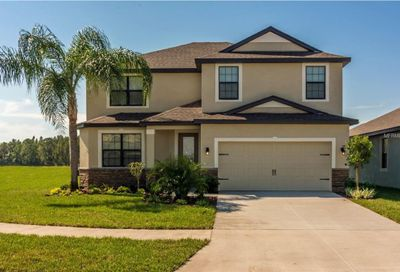 12536 Ballentrae Forest Drive Riverview FL 33579