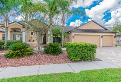 15124 Princewood Lane Land O Lakes FL 34638