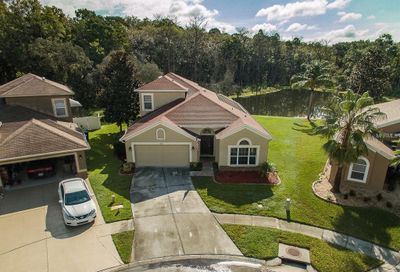 10910 May Apple Court Land O Lakes FL 34638