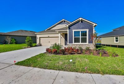 13112 Rain Lily Drive Riverview FL 33579