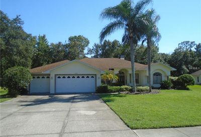 10102 Maybrook Court New Port Richey FL 34654