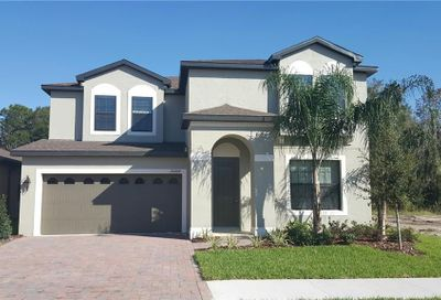 11634 Lake Lucaya Drive Riverview FL 33579