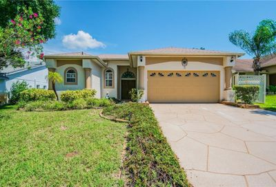 759 Wildflower Drive Palm Harbor FL 34683
