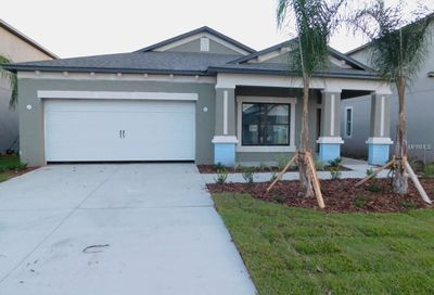 11425 Amapola Bloom Court Riverview FL 33579