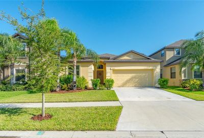 11012 Whittney Chase Drive Riverview FL 33579