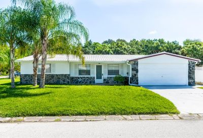 4884 Shell Stream Boulevard New Port Richey FL 34652
