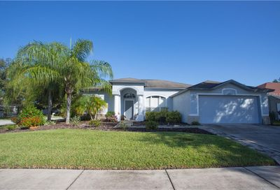 22411 Willow Lakes Dr Lutz FL 33549