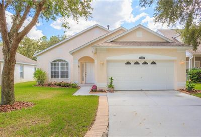 15822 Stags Leap Drive Lutz FL 33559
