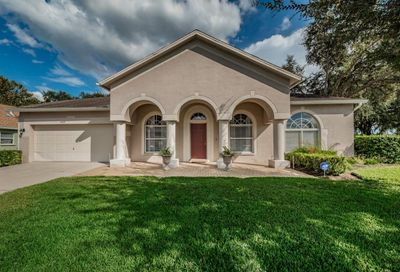 1420 Bent Bow Court Lutz FL 33549