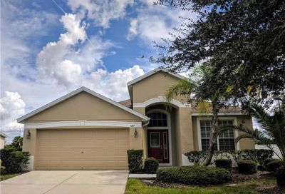 5205 Clover Mist Drive Apollo Beach FL 33572