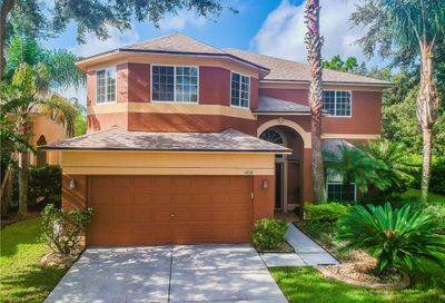 4224 Fishermans Pier Court Lutz FL 33558