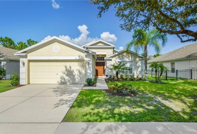 13312 Evening Sunset Lane Riverview FL 33579