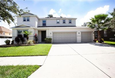 11135 Hartford Fern Drive Riverview FL 33569