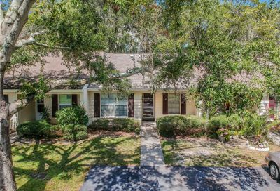 329 Dover Court E Safety Harbor FL 34695