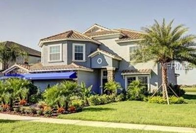 11881 Frost Aster Drive Riverview FL 33579