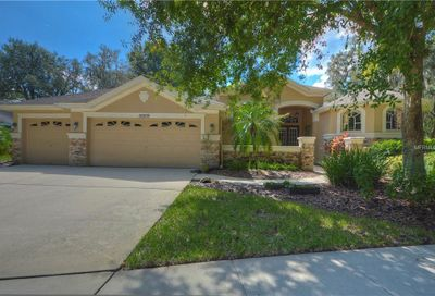 15209 Merlinglen Place Lithia FL 33547
