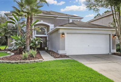 19309 Sea Mist Lane Lutz FL 33558