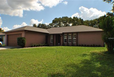 11213 Garfield Court Seffner FL 33584