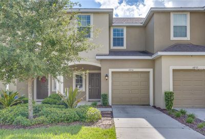 6830 Holly Heath Drive Riverview FL 33578