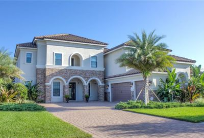 1501 Damaris Place Lutz FL 33548