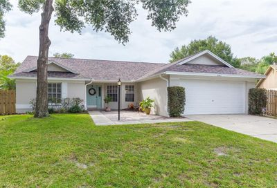 1547 Emblidge Court Lutz FL 33559
