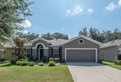 16007 Courtside View Drive Lithia FL 33547