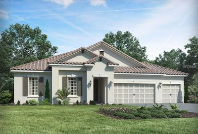 13323 Saw Palm Creek Trail Bradenton FL 34211