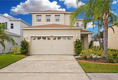 11010 Golden Silence Drive Riverview FL 33579