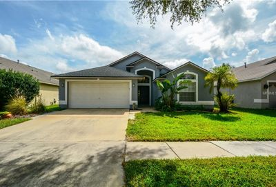 10117 Somersby Drive Riverview FL 33578