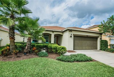 3142 Winglewood Circle Lutz FL 33558
