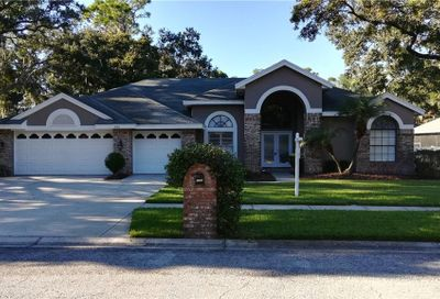 2106 Crooked Creek Way Valrico FL 33596