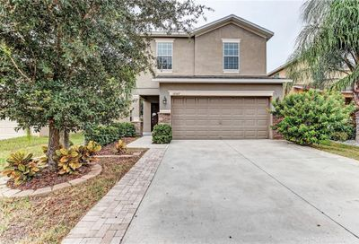10507 White Peacock Place Riverview FL 33578