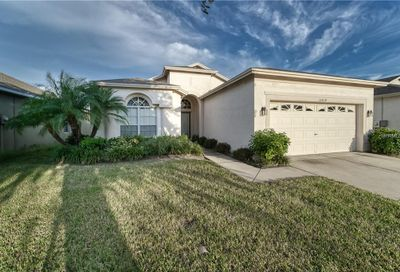 15414 Feather Star Place Ruskin FL 33573