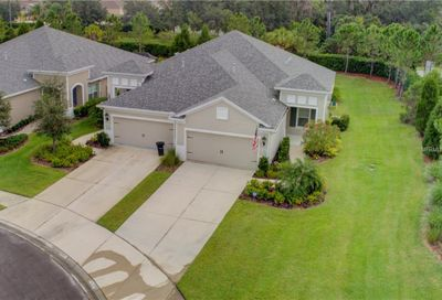 3906 Wildgrass Place Parrish FL 34219