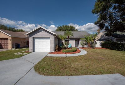 1926 Sheffield Court Oldsmar FL 34677