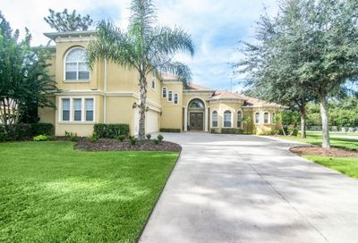 6217 Wild Orchid Drive Lithia FL 33547