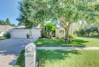 6101 Savoy Circle Lutz FL 33558