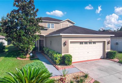 4306 Old Waverly Court Wesley Chapel FL 33543