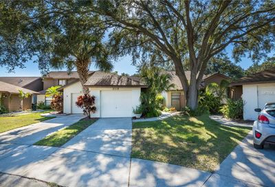318 Parkside Lane Safety Harbor FL 34695