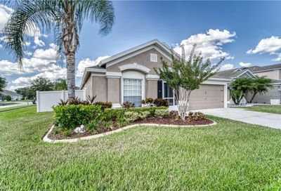 11602 Tropical Isle Lane Riverview FL 33579