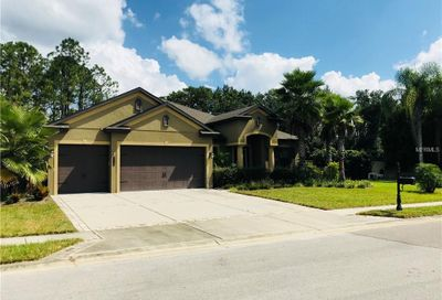 4720 Lago Vista Circle Land O Lakes FL 34639